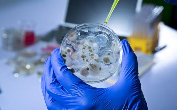 140 Karakterde Ebola